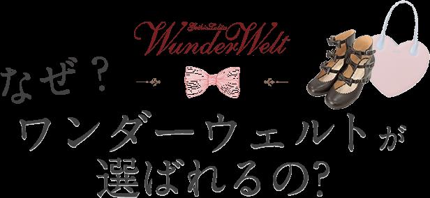 なぜワンダーウェルトが選ばれるの?